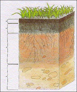 grondprofiel